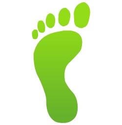 Image result for footprint